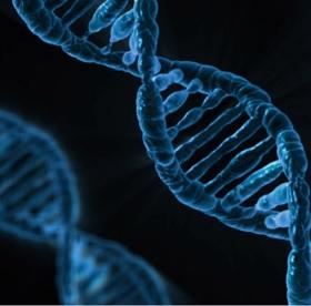 ゲノム編集とは 何か 簡単に メリット デメリット 双子 SF 遺伝子 DNA 病気 クローン